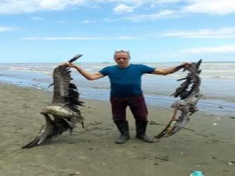 The Lagoon of Doom- Death on Carat Shed Beach, La Brea